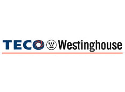 TECO Westinghouse: Our Clients