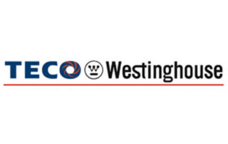 TECO Westinghouse: Our Clients